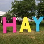 Brain stretching at the Hay Festival